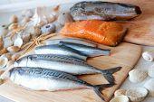 Fresh sea fish, mackerel; herring; smoked salmon, codfish