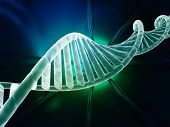 DNA strand modern design