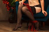 Beautiful Female Legs In Black Stockings And A Red Whip poster