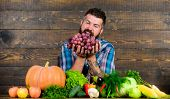 Farmer Proud Of Harvest Vegetables And Grapes. Man Bearded Holds Grapes Wooden Background. Vegetable poster