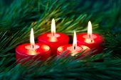 Four Burning Red Advent Candles Surrounded By Green Branches Of Spruce. Close Up poster