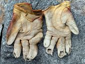 My Gloves
