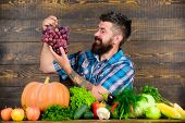 Vegetables Organic Harvest. Farming And Harvesting Concept. Man Bearded Holds Grapes Wooden Backgrou poster