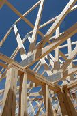 the seeming chaos of a house frame being constructed