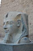 stock photo of ramses  - Ramses II Statue In Luxor Temple - JPG