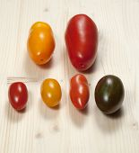 Six Different Tomatoes