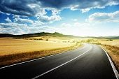 pic of fall-wheat  - asphalt road in Tuscany Italy - JPG