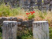 Ruins, Kos Town, Kos Island, Greece