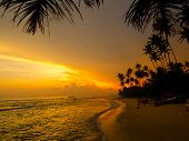 Beautiful tropical sunset on a beach in Sri-Lanka