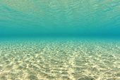 Dappled Sunlight on Sandy Sea Floor Underwater
