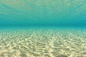 Dappled Sunlight on Sandy Sea Floor Underwater