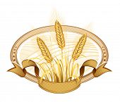 Wheat ears. Vector