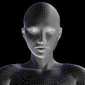 picture of cyborg  - High resolution concept or conceptual 3D wireframe human female head isolated on black background as metaphor for technology - JPG