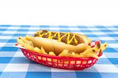 Side view of a chilidog with french fries on a checkered tablecloth.  Image was set up so designers