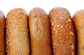 A closeup of 5 bagels standing on their sides with a white background. Bagels include, sesame seed,