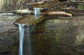 Archaic Spring With Wooden Channel