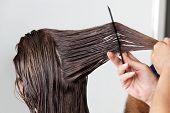 Manos de peinar el cabello mojado del cliente en el salón de peluquería
