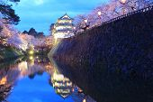 stock photo of night-blooming  - Light up of Hirosaki castle and cherry blossoms Aomori Japan - JPG