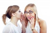 picture of babbler  - Two women communicating with each other on a white background - JPG