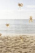 sea style decoration with starfish on sea and sand beach background
