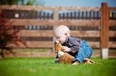 little boy playing with a puppy
