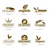Ecology, organic icon set. Organic-icons