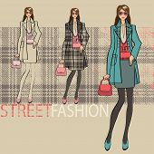 Lovely Fashionable Girl .options Ensemble.fashion Illustration