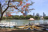 Landscape Scene Of Beautiful Lumphini Public Park Important Landmark In Heart Of Bangkok Thailand