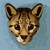picture of ocelot  - A vector  illustration of an ocelot - JPG