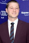 LOS ANGELES - JUN 7:  Benjamin McKenzie at the 13th Annual Chrysalis Butterfly Ball at Private Mande