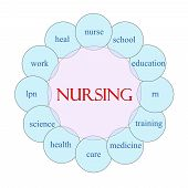 picture of rn  - Nursing concept circular diagram in pink and blue with great terms such as education medicine care and more - JPG