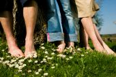 Healthy feet series: feet of men and women of different ages in the grass with daisies, all in a row
