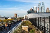 Along The High Line