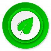 nature icon, leaf symbol