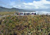 Tourists Taking Photos At Punakaiki Rocks, West Coast New Zealand.