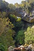 Oparara Basin Limestone Arch Over The River, New Zealand