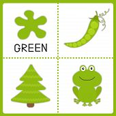 Learning  Green Color. Frog, Green Pea And Fir Tree. Educational