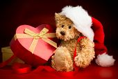 Teddy Bear Wearing A Christmas Hat And Hugging A Box