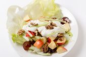 A traditional Waldorf Salad with lettuce, apple,grapes,walnuts,and celery sticks, topped with a salad dressing of yoghurt with cream, salt, pepper and walnut oil.