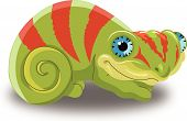 Chameleon, Illustration