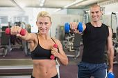 Portrait of a couple exercising with dumbbells in the gym