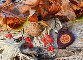 Ethnic Handmade Wooden Necklace (amulet)