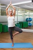 Portrait of a sporty young woman standing in tree pose at fitness studio