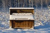 Piano Abandoned In Winter Field