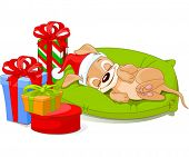 Cute little puppy with Santa Hat is sleeping near Christmas gifts.