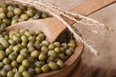 Green Mung Bean In A Wooden Bowl Macro. Horizontal