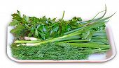 Greens - Parsley, Onion, Fennel - In The Retail Tray