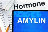 image of hormones  - Papers with hormones list and tablet  with word  amylin  - JPG
