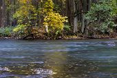 pic of beaver  - Beautiful wild river photographed in autumn - JPG