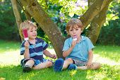 stock photo of eat grass  - Two adorable little sibling kids eating ice cream pops in home - JPG